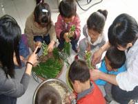 幼儿园小班教学计划