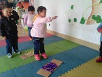 幼儿中班教育随笔:驻足静待花开