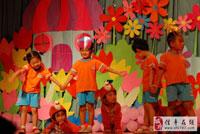 中班语言活动教学反思《去年的树》