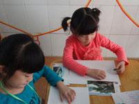语言活动《去年的树》教学反思